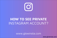 How to See Private Instagram? (Tips to Make Yours Safer)