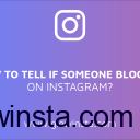 How to Tell If Someone Blocked You on Instagram? (Tips & Tricks)